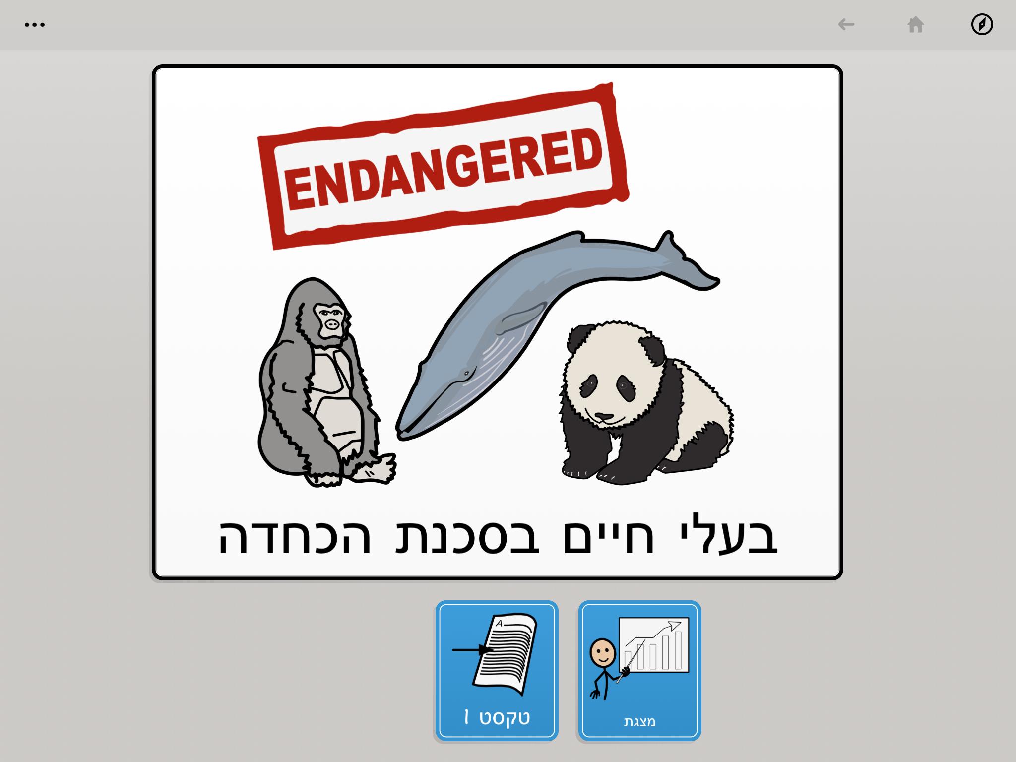 בעלי חיים בסכנת הכחדה מסך פתיחה